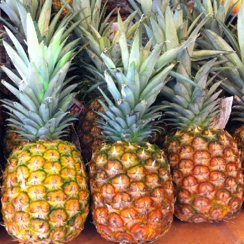 pineapple queens