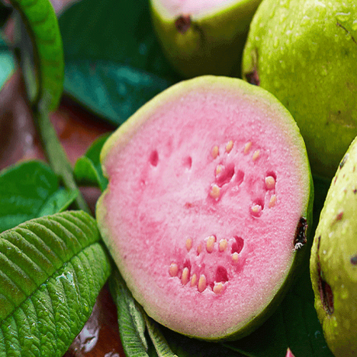 Organically Grown Guava ( Pink Flesh ) -500 Gms